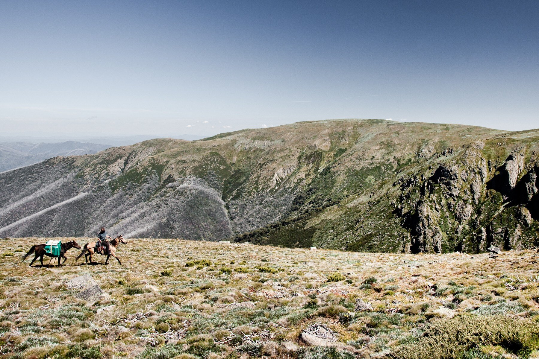 High Country Harvest packages